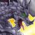 Metal Dragon (Dragon of Steel) Icon