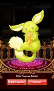 Elite Thunder Rabbit 2