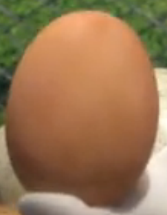 File:Rabbids Egg2.png