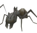 Bitty Ant