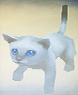 File:Frienditem-Lulus Cat.jpg