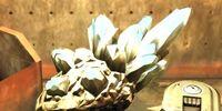 Feltrite Crystals