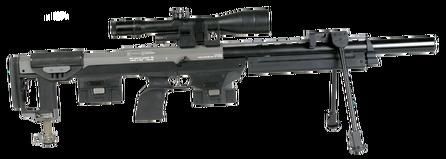 DSR-1 (1)