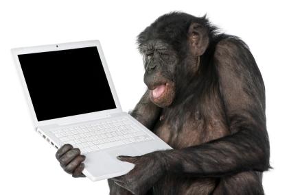 File:Monkey at a laptop.jpg
