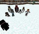 Rancraft Penguins Wiki