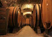 Botti size oak barrels