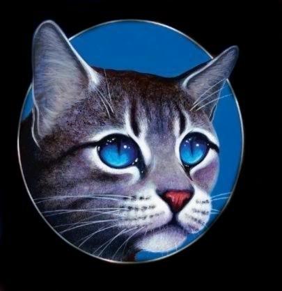 File:Jayfeather-warrior-cat-16180010-405-418.jpg