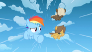 1000px-Filly Rainbow and the colts racing S1E23