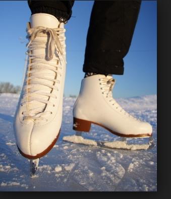 File:Icec skates.png