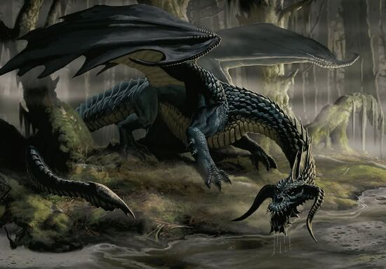 Black Dragon 04