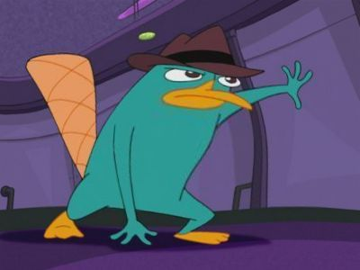 Perry is fat