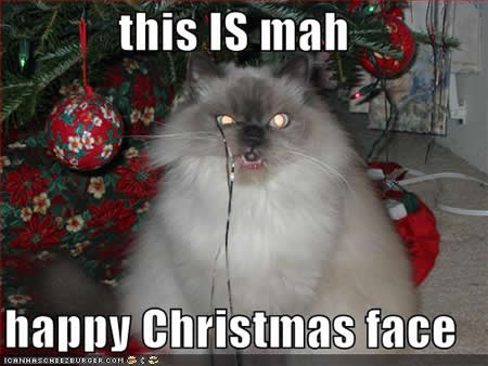 File:Funny-pictures-my-happy-christmas-face.jpg