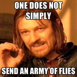File:One does not simply send flies.jpg