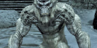 How to kill a Frost Troll in Skyrim