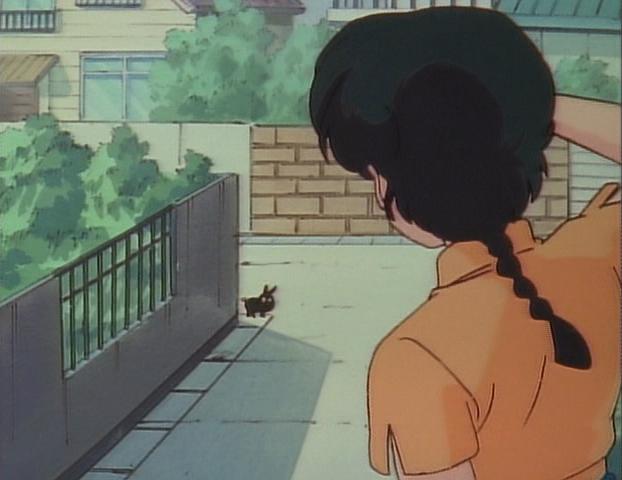 File:Ranma sees Black Piglet.png