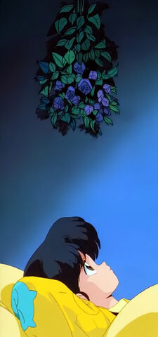 File:S01-12-A-Woman's-Love-is-War!-The-Martial-Arts-Rhythmic-Gymnastics-Challenge!-Akane-Black-Roses.jpg