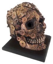 Comstocks skull