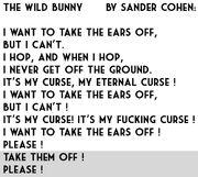 TheWildBunny