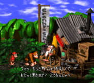 Cranky's Cabin - Super Donkey Kong