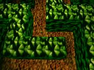Creepy Castle - Greenhouse