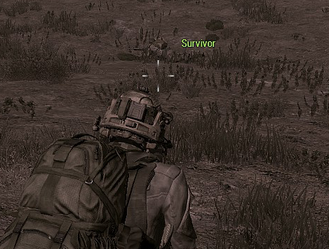 File:Survivor.png