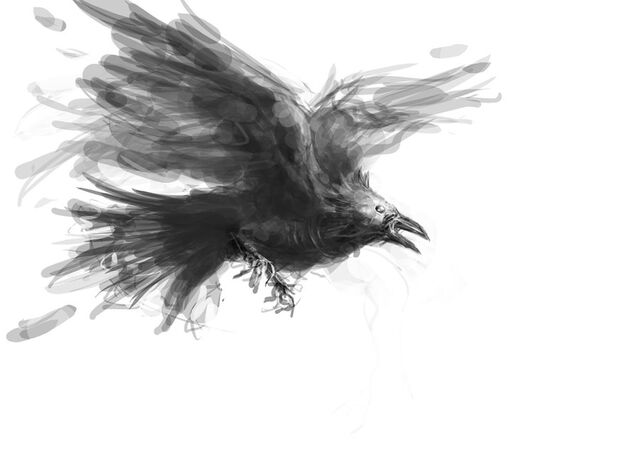 File:Sketch undead raven by michifromkmk-d5n804p.jpg