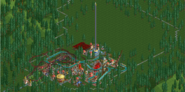 Forest Frontiers