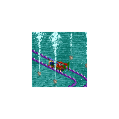 Dhow water ride<br />(<a href=