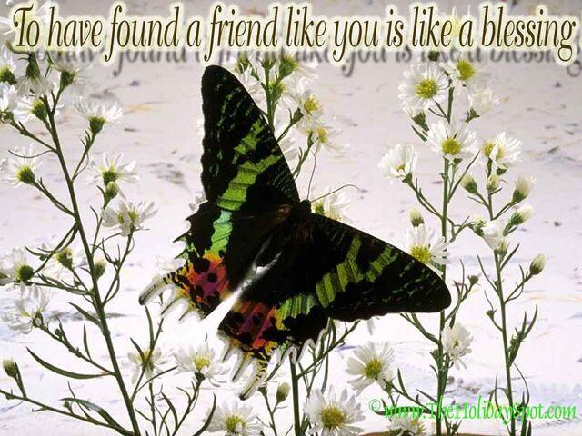 File:Friendship-wallpaper-05.jpg