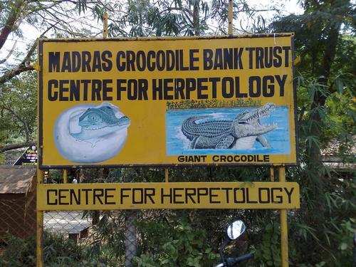 File:Madras Crocodile Bank.jpg