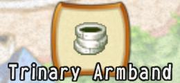 File:Trinary armband.jpg