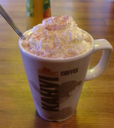 File:Hot chocolate mug with whipped cream.jpg