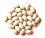 File:Navy beans.jpg