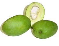 GreenMangoes