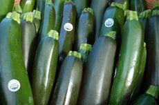 Organic+Zucchini-3168