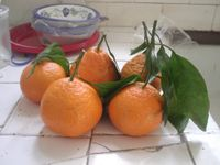 File:Mandarinoranges.jpg