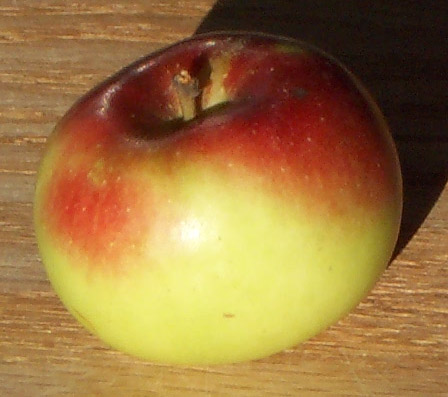 File:LadyApple.jpg