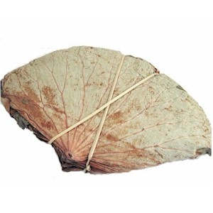 File:Dried lotus leaf.jpg
