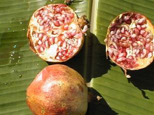 File:Grenadine.jpg