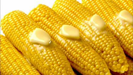 File:Corn on the Cob.jpg