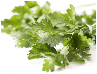 File:Italian parsley.jpg