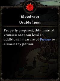 Bloodroot Card
