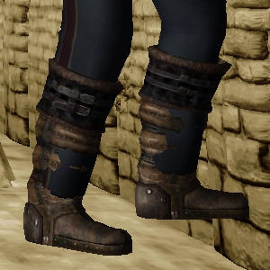 Boots of the Adventurer