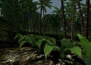 Island-X 006