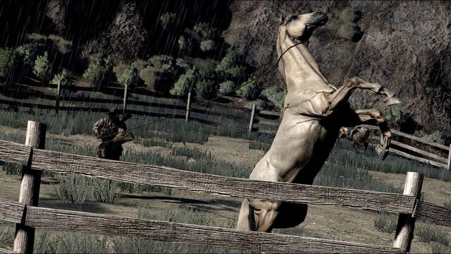 File:Rdr horse06.jpg
