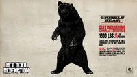 Rdr bear