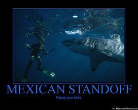 633677464728973769-MexicanStandoff