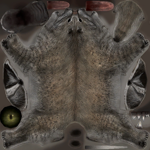 File:Bobcatmexico03 d1.png