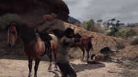 Rdr together in paradise16