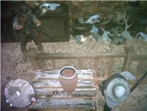 File:Zombi's Skull Pile.jpg